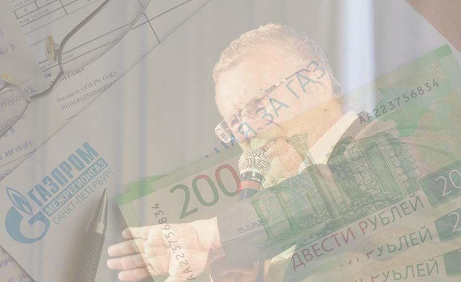 Жириновский предложил запретить отключать газ за долги