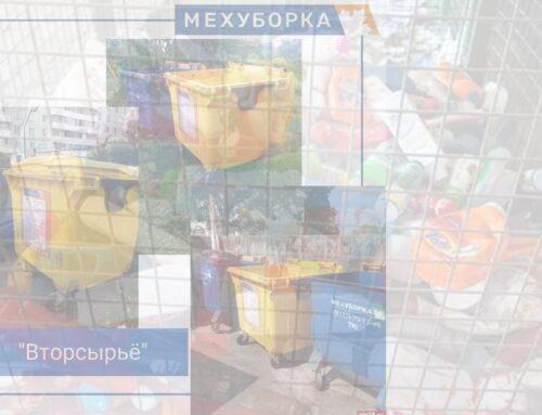 В Пскове увеличивается количество контейнеров для вторсырья